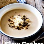 Slow Cooker Potato Leek and Cheddar Soup