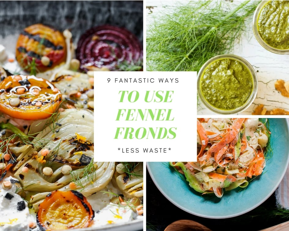 What to make with FENNEL - cover