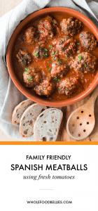 Spanish Meatballs Pin (1)